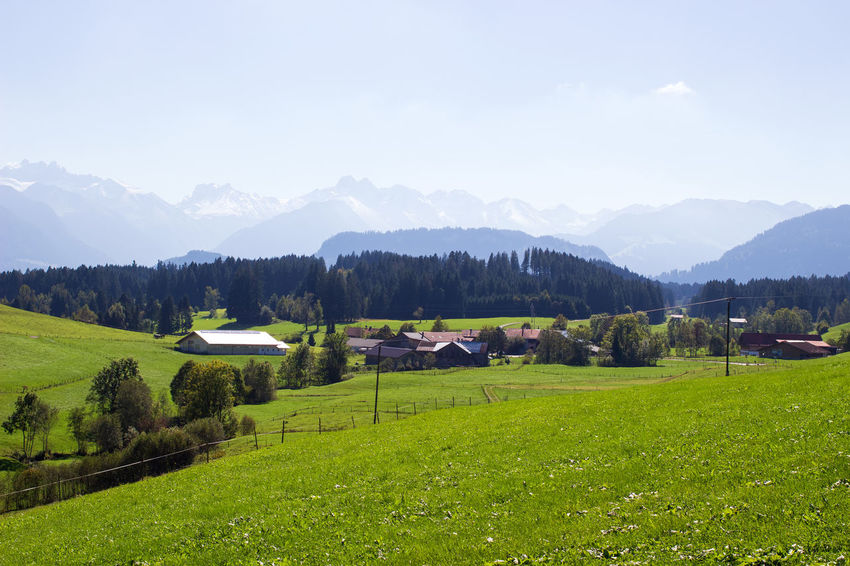 Landscape in Bavaria/Germany Beauty In Nature Bayern Allgäu Landscape Landscapes Nature No People Tranquility Agriculture Agricultural Field Countryside Mountain Mountains Panorama Rural Scene Valley Grassland Meadow Travel Destination Travel Destinations Tourist Destination Tourist Destinations Allgäu Alps Rural Scenes Grasslands