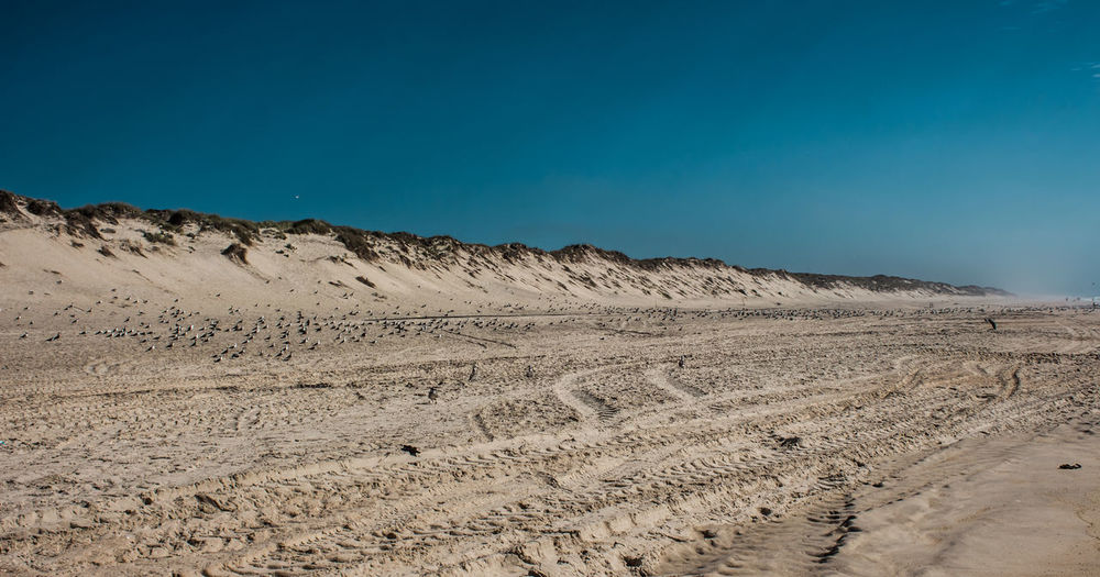 View of sandy beach against clear sky