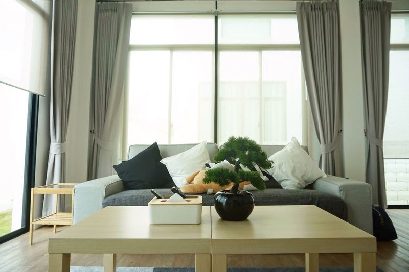 Living room Indoors  Window Furniture Home Interior Living Room No People Domestic Room Sofa Table Nature Chair Home