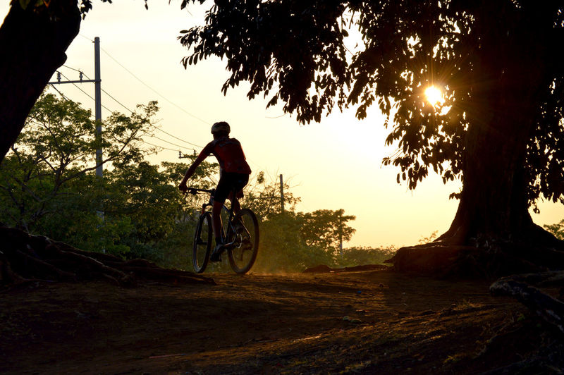 Biking Alone Time Alone In The City  Biking Tranquility Tree Hiking Trail People Single Object Sports Sun