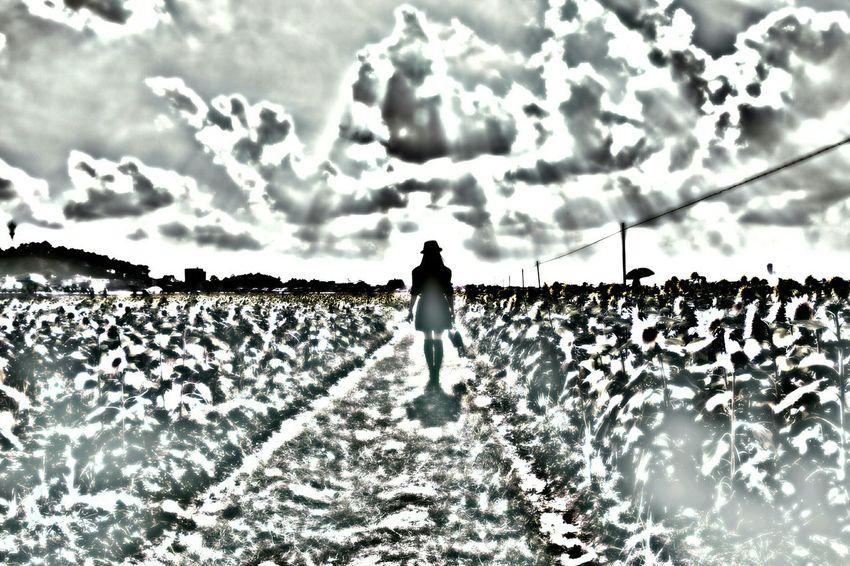 摄影 人像 佳能 Portrait Photography Black And White The Beauty Canon