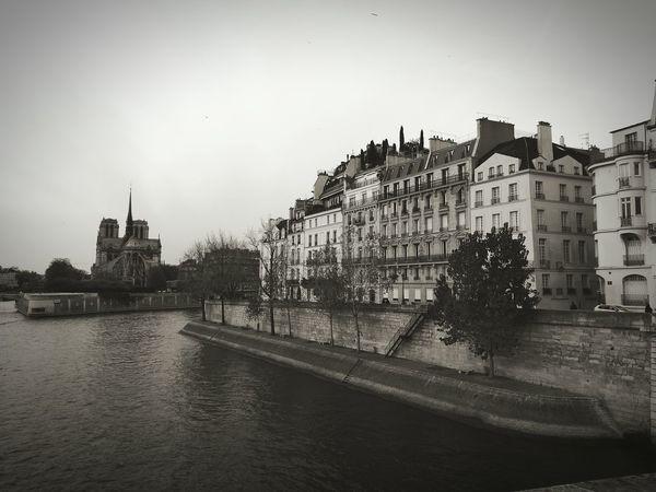 Notre Dame Cathedral Paris, France  Ile Saint Louis Seine Blackandwhite Bridge