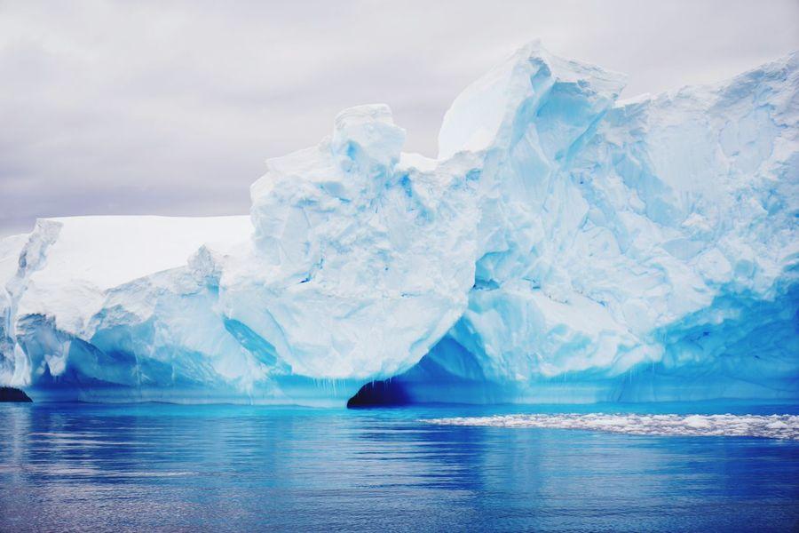 Antarctica Sound Of Life South Pole Iceberg Blue Sea Blue Water Iceberg Shape Ice Shapes Original Experiences Feel The Journey The Innovator Outdoors Landscape Amazing Landscape Showcase June Coloroflife