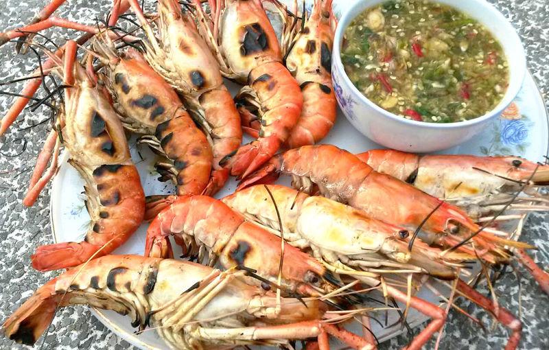 High angle view of prawns