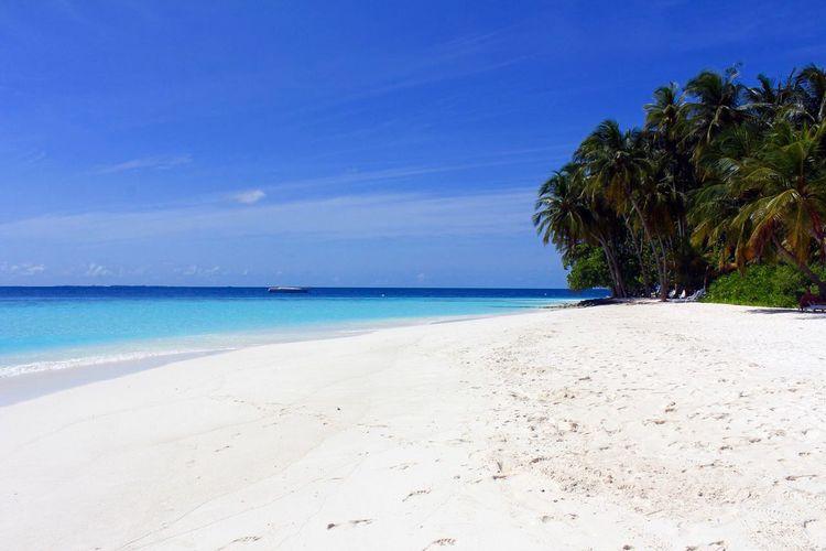 Nature Maldives