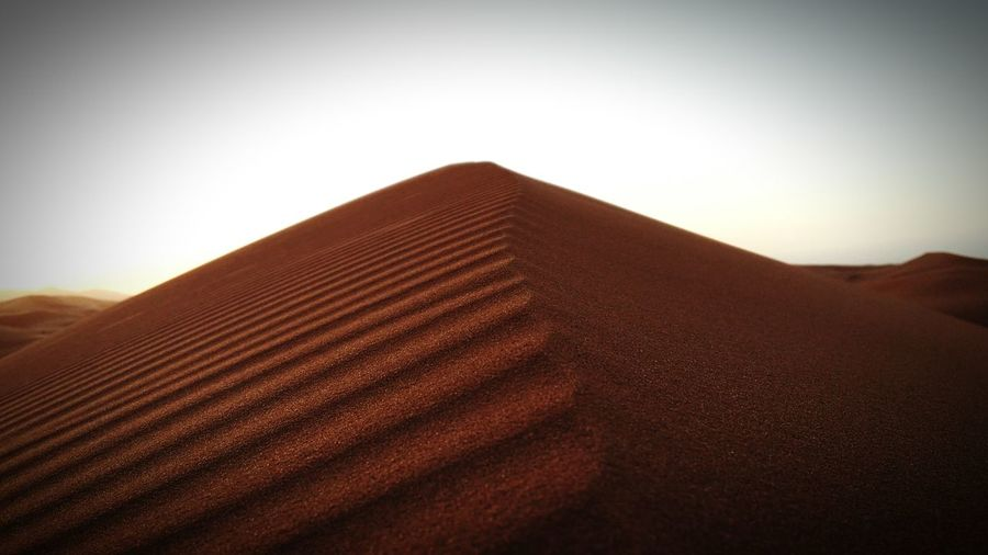 Desert Sahara Dune The Small Things Samsung Galaxy Note 3 Hanging Out Relaxing Silence Hello World Eye4photography  Macro Beauty