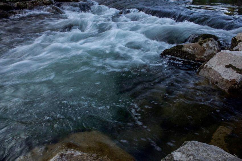 Mit Widerlegung beginnt die Anerkennung. Nature Water Basel, Switzerland Phtotography Canonphotography