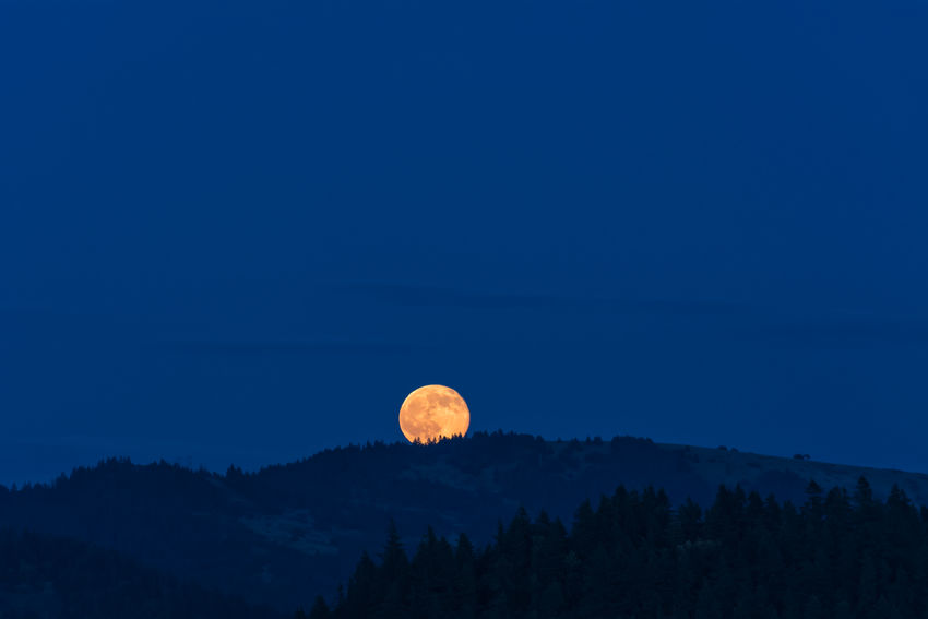 Beauty In Nature Blue Dark Eugene Oregon Full Moon Hills Idyllic Illuminated Landscape Majestic Nature Night No People Oregon Outdoors Scenics Shillouette Sky Solstice StrawberryMoon Tranquil Scene Tranquility