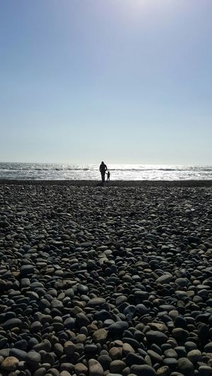 Sea Beach Horizon Over Water Water Outdoors Pebble Tranquility Clear Sky Nature