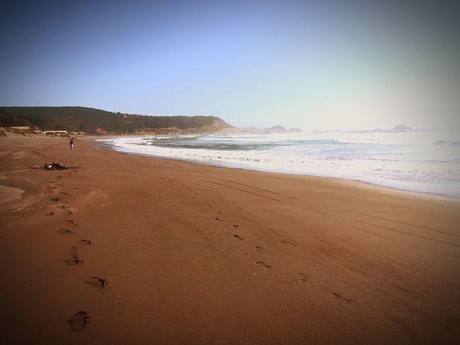 Chile Matanza Playa Instachile OpenEdit Small And Swift Popular Photos Blackandwhite Ubo Drinking Gatorade