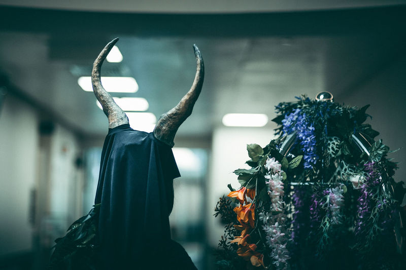 Female Likeness Decoration Fashion Representation Still Life Craft Art And Craft Hanging Indoors  Close-up Costume Nightmare Horror Halloween Scary Horns Movies Cinematic Hospital Spooky Dreaming Ghostly