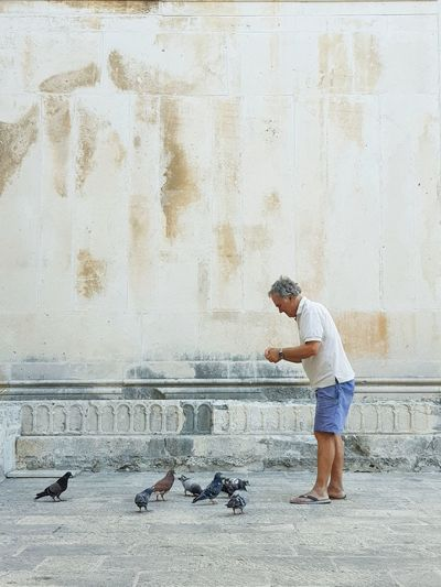 Casual Clothing Full Length Feeding The Birds Feeding Pigeons Old Wall Old Town Square Sandcolor Stone Material Holiday Textures And Surfaces Urban Photography Mediterranean  Stone Pavement Vacations Travel Destinations