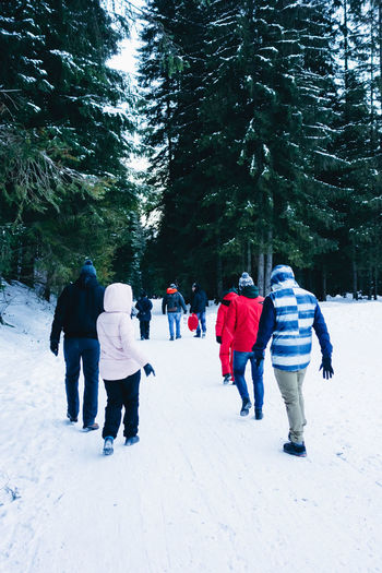 Hiking with friends Snow Winter Cold Temperature Tree Group Of People Warm Clothing Plant Real People Nature Rear View Leisure Activity Lifestyles Walking Clothing People Outdoors Day Winter Wintertime Winter Wonderland Snowcapped Mountain Sonyrx100 Hike Holiday Fun