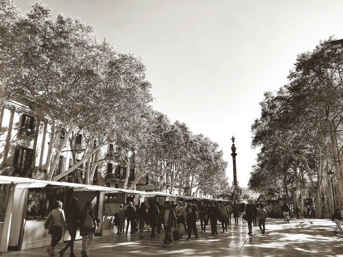 People walking in park against sky in city