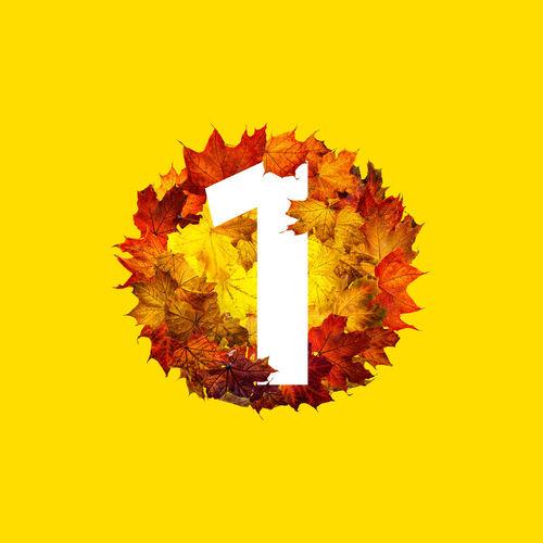 Digital composite image of maple leaf against orange sky