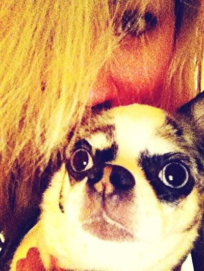 Ahh... Love her... even though she looks like a gremlin.. (; lol