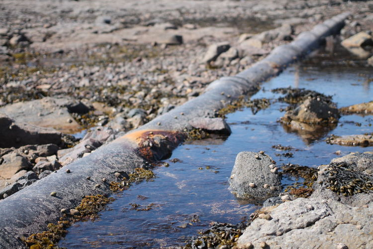 Close-Up Of Water Pipe Amidst Rock