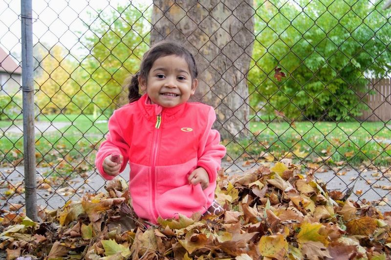 Smiling Fence Childhood Portrait Outdoors Looking At Camera Cheerful Happiness Leaf Children Only Autumn Day Girl Happiness Child Playing Detroit Innocence Sitting