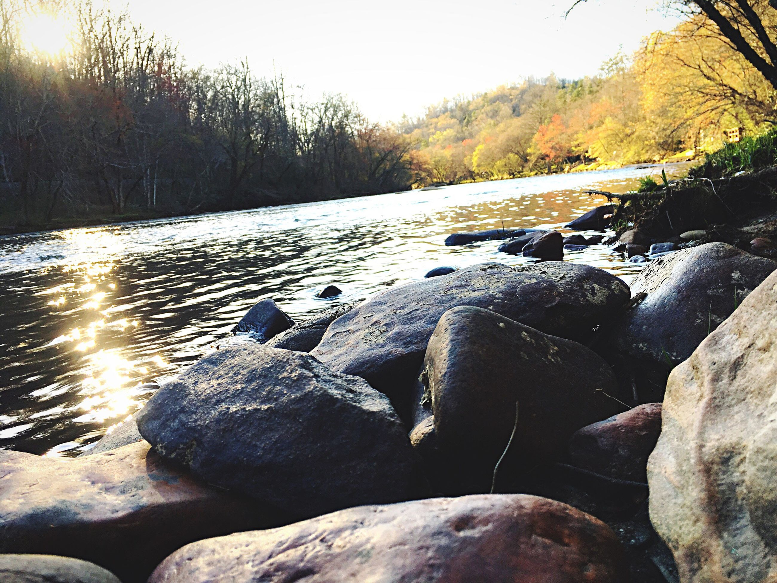 rock - object, water, nature, tranquility, tranquil scene, beauty in nature, tree, scenics, stone - object, sunlight, winter, river, snow, cold temperature, outdoors, rock, no people, stream, day, non-urban scene