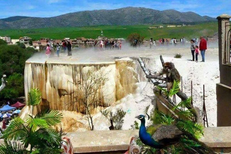 Hammam meskoutine guelma- Algérie Large Group Of People Mountain Nature Day Real People Men Outdoors Women Water Bird People Adult Adults Only Hammam Meskoutine Guelma Guelma Algeria Algérie Algeria Photography EyeEm Best Shots EyeEm Nature Lover EyeEm Gallery EyeEm EyeEm Best Edits