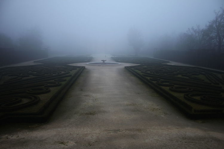 Garden against sky during foggy weather