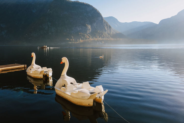 Swan And Boats On Lake Against Mountains