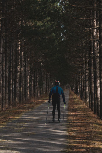Rear view of woman skating on road amidst trees