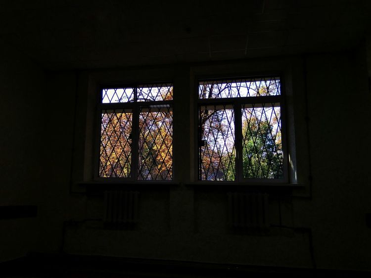 tatianakipka Autumn Autumn colors Autumn🍁🍁🍁 Window Window Architecture Close-up Built Structure Fall Autumn Collection