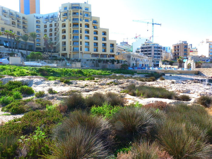 Malta Paceville Mediterranean  Building Exterior Built Structure Architecture City Sky Building Plant No People Grass Residential District Growth Construction Industry Development Crane - Construction Machinery Day