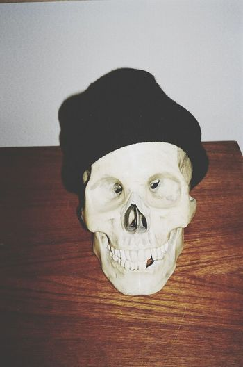 Skull Face Photography Cool