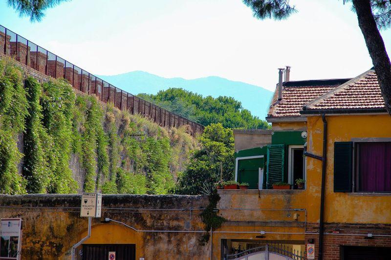 Urban tuscany.