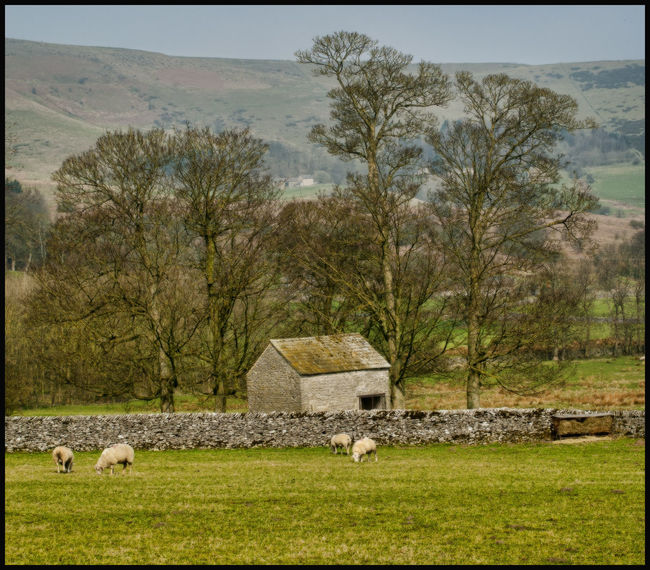 Castleton Derbyshire Derbyshire Dales English Countryside Peveril Castle Countryside Day English Village Nature No People Outdoors Rural Scene