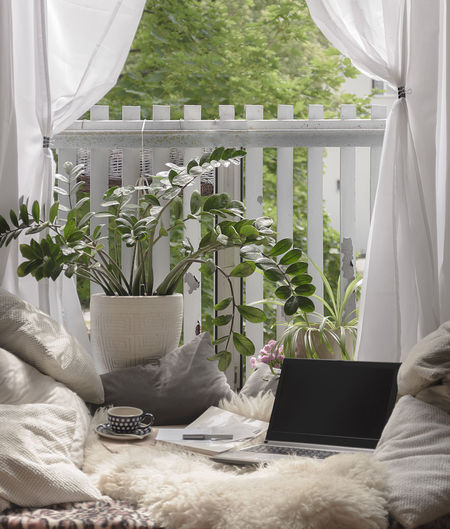 Blanket and Pillow Bed City Coffee Freelance Life Home Office Nature Pillow Student Bay Window Bed Blanket Bed Concept Flat Fur Furniture Home Interior Home Work Indoors  Interior Laptop Notebook Remote Working Window