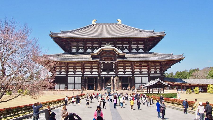 Todai-Ji 🇯🇵 Nara Nara,Japan Japan Photography UNESCO World Heritage Site Historical Place Nara-shi Travel Destinations EyeEm Best Shots Showcase March Sightseeing Japanese Temple Temple ASIA Clear Sky Trip Spring Building Exterior Famous Place Taking Photos Real People 東大寺大仏殿 東大寺 奈良 世界遺産