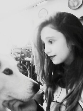 Mydog♡ Queen Ilovemydog She Is My Life  Beutiful <3 :33 ^.^♡