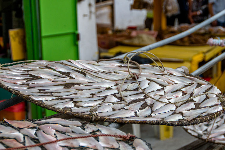 Drying fish at Lantau Island Close-up Focus On Foreground No People Outdoors Lieblingsteil My Point Of View Nature Landscape_Collection Drying Fish Dry Fish Still Life Photography Still Life. Still Life. Nature. Colours StillLife Still Life Still Life Photograpy Lantau Island Lant Minimalist Architecture The City Light Art Is Everywhere