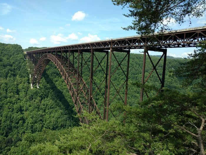 Sky Outdoors Green Color Day Grass No People Growth Nature Tree West Virginia Scenery West Virginia Photography West Virginia New River Gorge Beauty In Nature Scenics Landscape Cloud - Sky Wesr Virginia new river gorge bridge