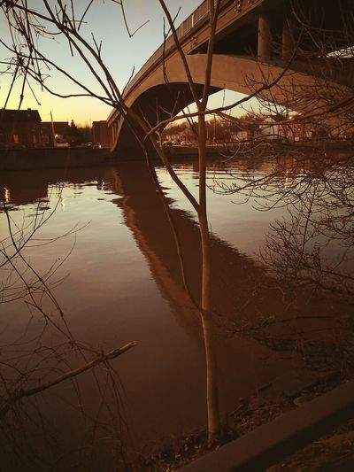 Bridge River River View Oise  Silhouette Branches Water Reflection Sky Boat