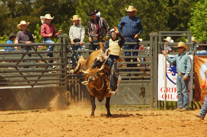 Youth Rodeo Animal Themes Bucking Bronco Cowboy Cowboy Hat Livestock Rodeo Wild West Young Adult