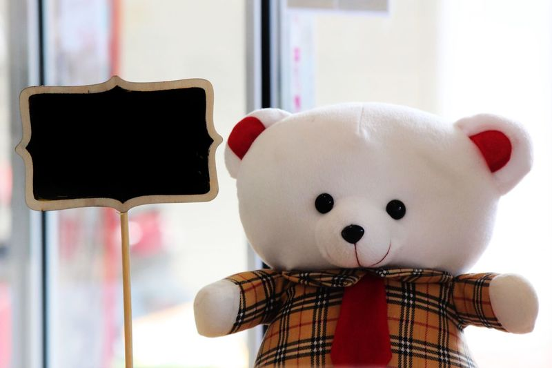 Cute♡ Cute Doll Bear Doll Blackboard  Indoors  Piggy Bank Childhood No People Day Stuffed Toy Close-up