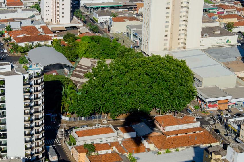 Architecture Building Exterior Built Structure City Day Cityscape City Sol Natureza Sombra Balao Fotografiaaeria Fotografiaautoral Fotodocumental Documentaryphotography Aerial View Nature