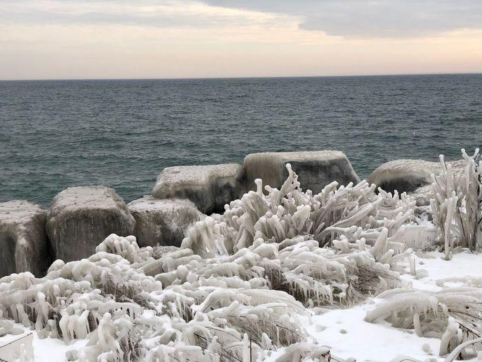 Frozen The