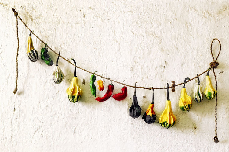 peppers with zucchini hangings on a cord in cal wall Abundance Arrangement Close-up Day Farmers Market Green Green Color Group Of Objects In A Row Large Group Of Objects Multi Colored Natural No People Nutrition Organic Outdoors Repetition Side By Side Still Life Variation Vegetarian Wall - Building Feature Zuccini