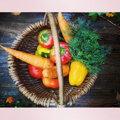 Useful Motivation Fashion вегетарианство полезно фото овощи веган перец корзина eat pepper деревня veganfood vegetables me moment carrots vegan vegetarian photo