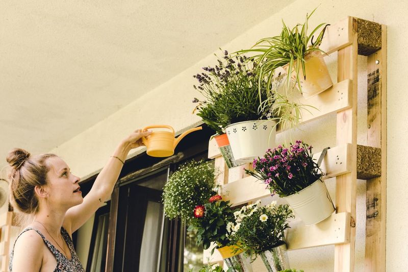 happy young woman watering her potted plants Potted Plants Young Woman Balcony Watering DIY DIY At Home Florist Watering Can Florist EyeEm Selects Plant One Person Nature Young Adult Potted Plant Lifestyles Day Flower Decoration Real People Flowering Plant Flower Pot