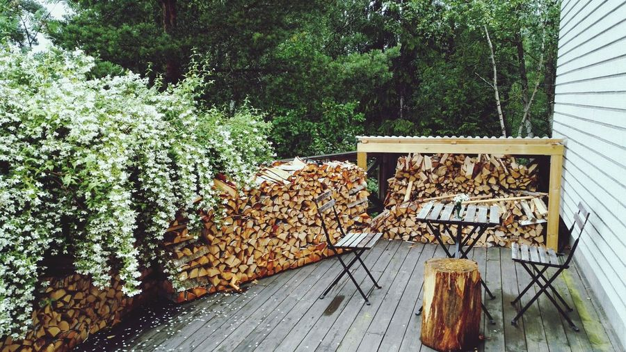 Stack of logs in yard