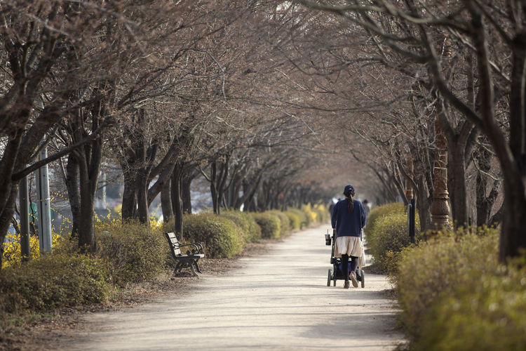Rear view of woman with baby carriage walking on road