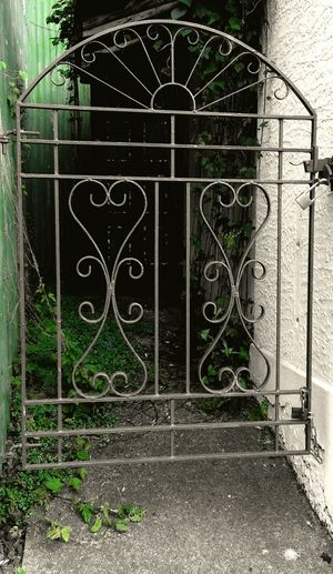Gate Entrance Gateway Wrought Iron Metal Closed Gate Green Background Green