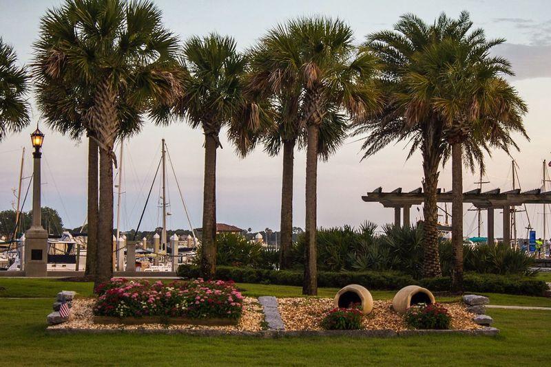 Palm Trees Atlantic Ocean Seaside Garden Flowers Mulch Grass Bridge Pergola Sailboats Iamnewhere EyeEmNewHere