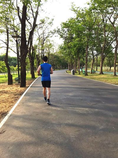 Exercise Park Jocking Running Rear View Tree Real People Full Length One Person Road Direction Walking Day Outdoors Nature